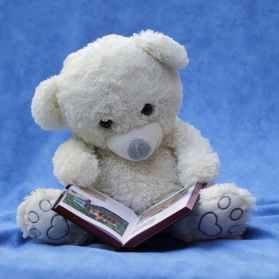 Teady bear reading